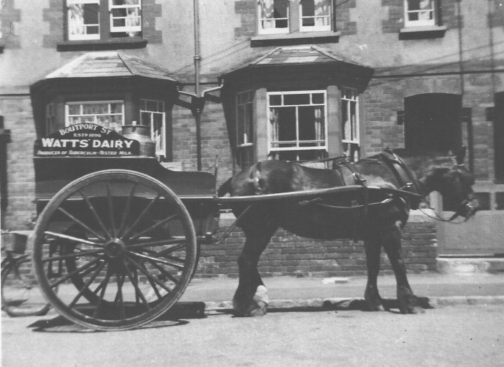Captain the Milk Horse delivering Milk in Yeo Vale, Barnstaple, c.1950
