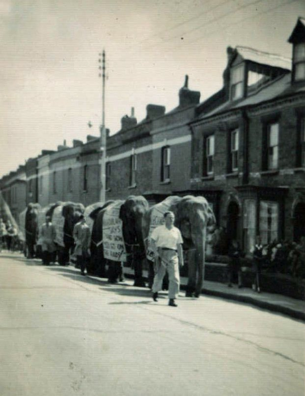 When the Circus Paraded in Rolle Street in 1953