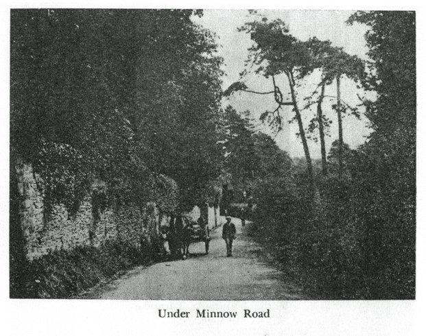 Under Minnow Road